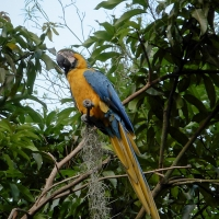 san_gil_colombia-0795