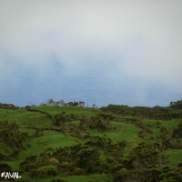 azores_picture-1642