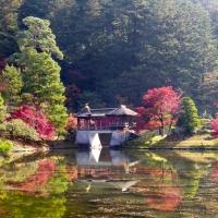 japan_pictures_roberdo_raval-7