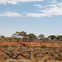roadtrip_australia_04.jpg